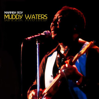 I'm Your Hoochie Coochie Man  by Muddy Waters (1954)