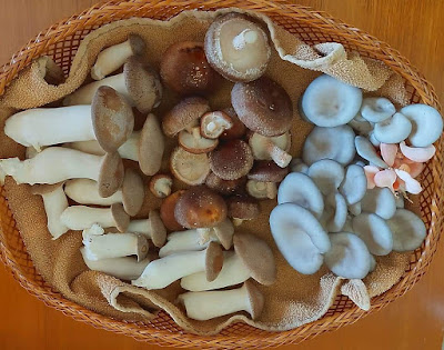 What are the costliest mushrooms?