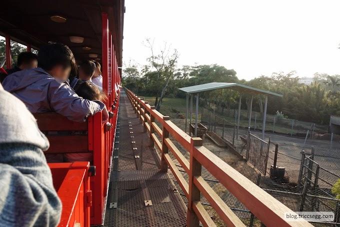 新竹關西鎮 六福村主題樂園之非洲部落-六福村裡的野生動物園。