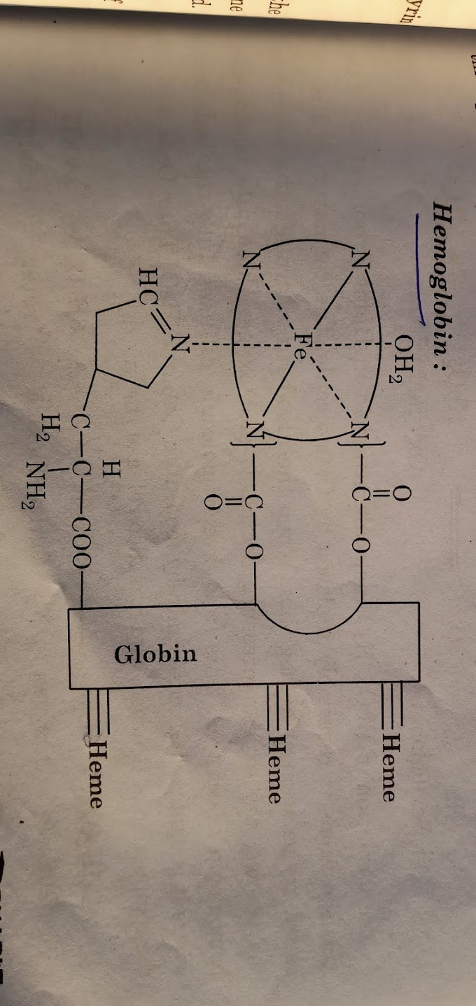 Hemoglobin details