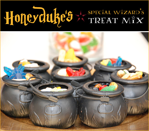 Harry Potter Wizarding Party Ideas