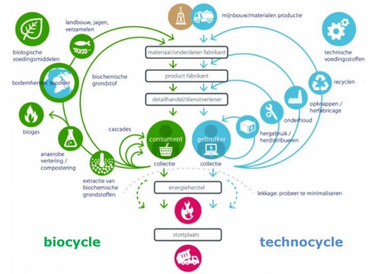 The biocycle flowchart