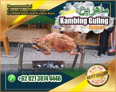 kambing guling muda bandung,Catering Kambing Guling Muda Bandung,kambing guling bandung,catering kambing guling bandung,Kambing Guling,