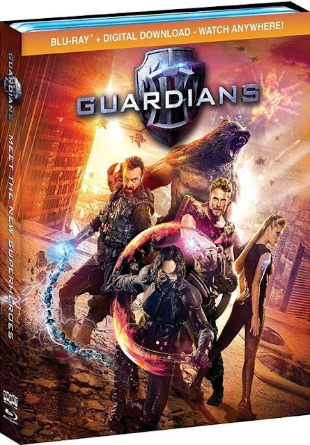 The Guardians (2017) Hindi Dual Audio BluRay 720p