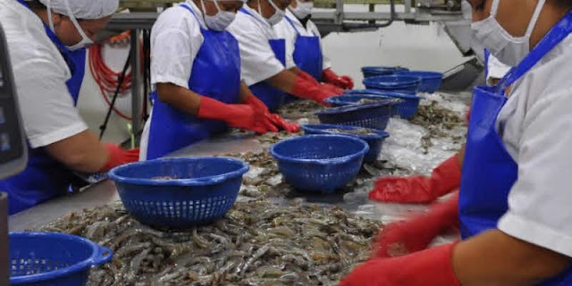 Productos de acuicultura y pesca de Guatemala, aprovechan las nuevas tendencias de consumo y comercialización mundial impuestos por la COVID-19