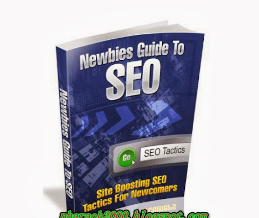 Free download amazing report-Newbies guide to SEO