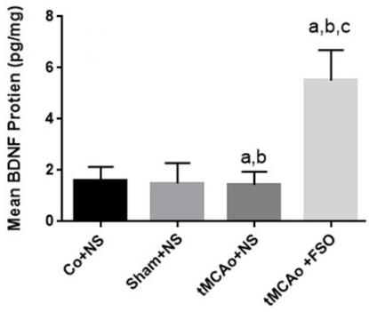 図:脳卒中への亜麻仁油のBDNF増産効果