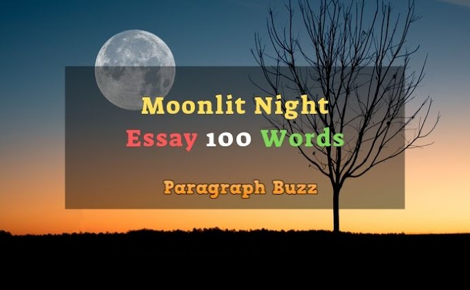 Essay on a Moonlit Night in 100 Words for Students