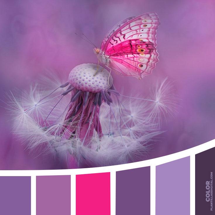 color_402