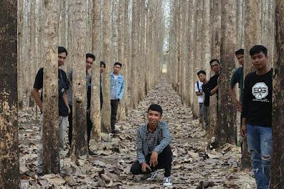 Hutan jati lampung selatan