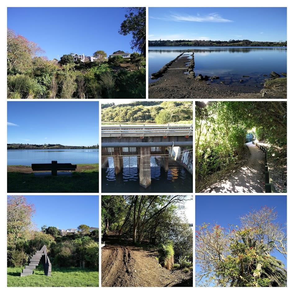 Vivre Auckland: Le bassin d'Orakei - Volcan d'Auckland