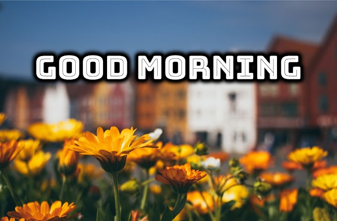 Images On Good Morning in 2020  | Makes an inspiring day