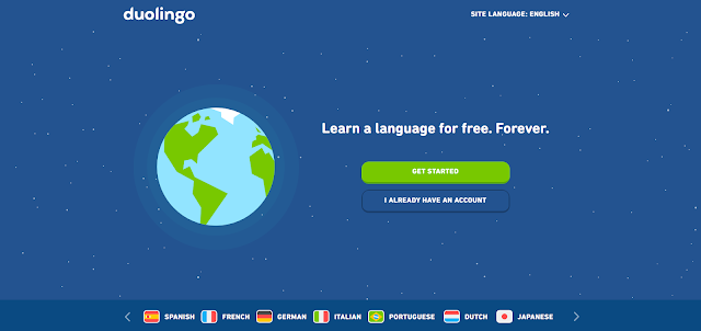 duolingo language translation website