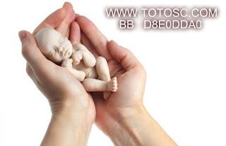 [Image: pizap.com15152907969131.jpg]