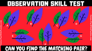 Can you find the matching pair in this observation skill test?