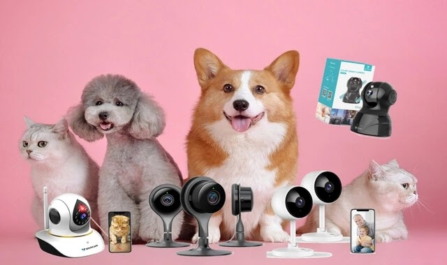 Top 5 Best Pet camera with Apps on Amazon 2021 Review | For Cats & Dogs