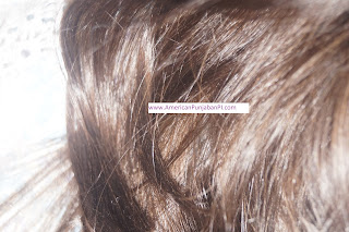 henna dye for stubborn American gray hair