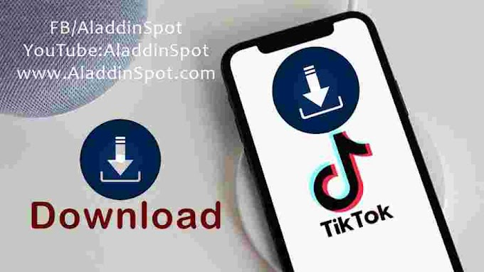 How to download TikTok Videos without a watermark?