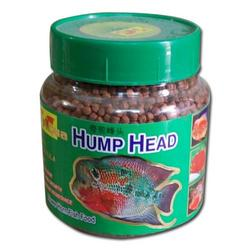 FLOWER HORN FISH FOOD FOR LARGE HUMP | FLOWER HORN FISHES