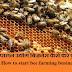 मधुमक्खी पालन उद्योग बिज़नेस कैसे करे पुरी जानकारी / How to start bee farming business in hindi
