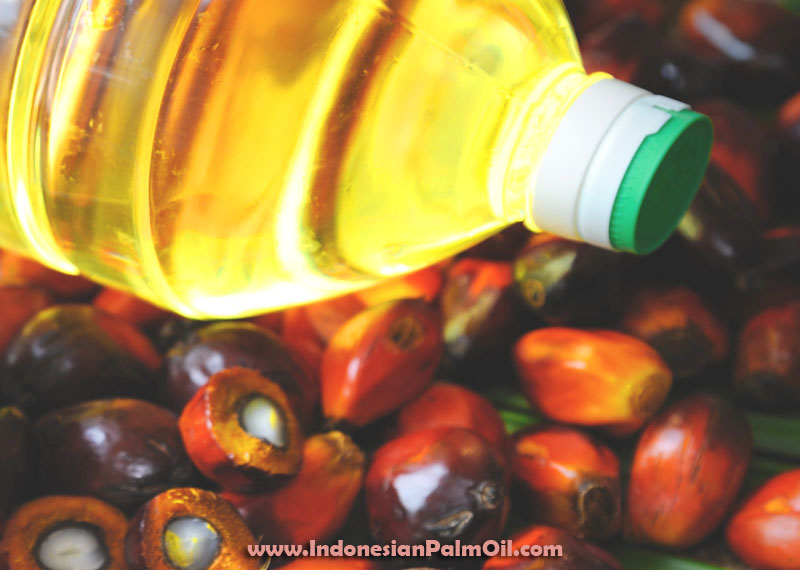 unsaturated fats in palm oil