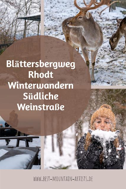 Blättersbergweg Rhodt  Winterwandern Südliche Weinstraße  Rietburg - Villa Ludwigshöhe - Edenkoben 42