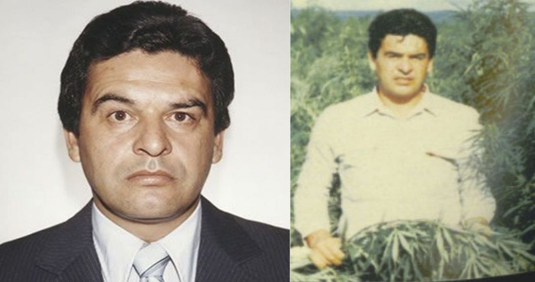 A 35 años Gringos quieren reabrir el Caso 'Kiki' Camarena para seguir justificando sus acciones en México