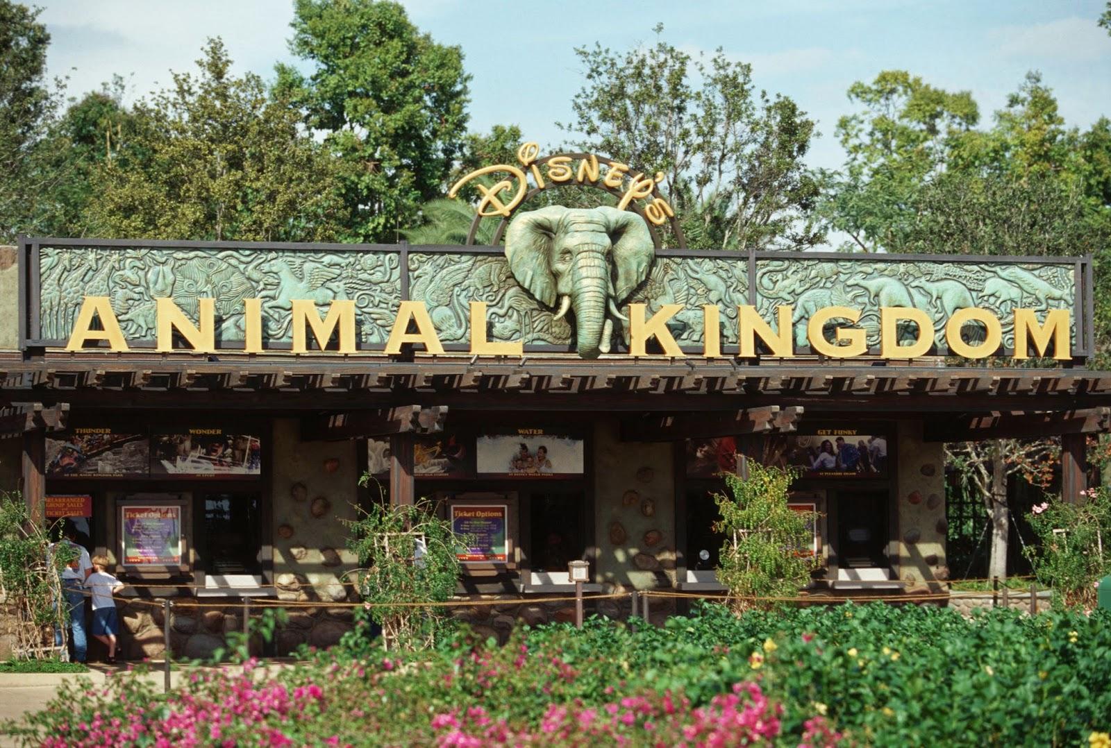 Disney animal kingdom park