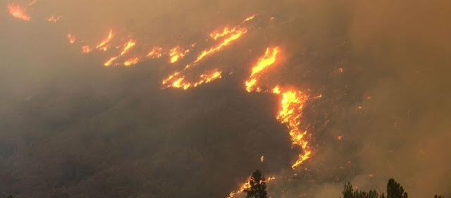 Kόλαση στην Εύβοια: «Να εγκαταλείψουν την περιοχή» καλούν οι Αρχές τους κατοίκους - «Πύρινη» νύχτα