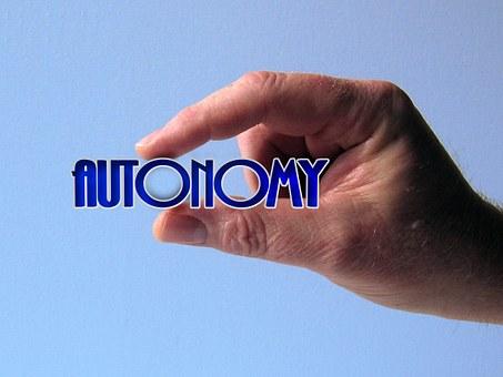 The value of autonomy