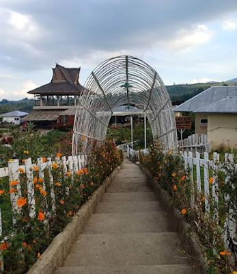 Madu Efi, Wisata Taman Bunga Indah dan Instagenic di Kabanjahe | Lebah Australia