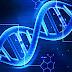 DNA Al Qur'an