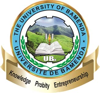 UBa gets new director of Academic affairs
