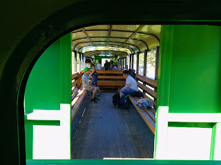 Выгода. Экскурсия по узкоколейке карпатским трамваем