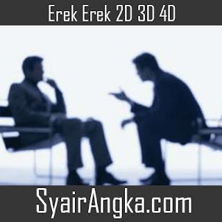 Erek Erek Menjadi Konsultan 2D 3D 4D