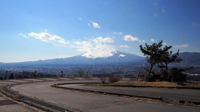河津桜が散りソメイヨシノが開花する前の期間に咲く南足柄市の春めき桜の名所を巡り、足柄峠を越えて戻るサイクリングコース