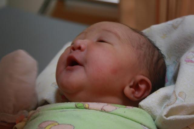 Tradisi Mamoholi (Menyambut Kelahiran Anak) Dalam Budaya Batak