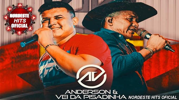 ANDERSON & VEIO DA PISADINHA TOP FEST VERÃO 2021