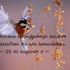 50 Kata Bijak Tentang Hati Yang Memiliki Makna Mendalam dan Islami
