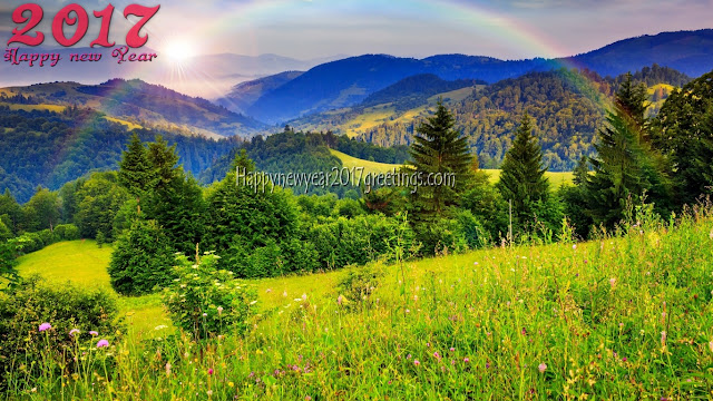 Happy New Year 2017 Nature Background Images In HD