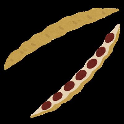 さやに入った小豆のイラスト