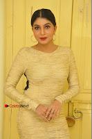 Actress Pooja Roshan Stills in Golden Short Dress at Box Movie Audio Launch  0007.JPG