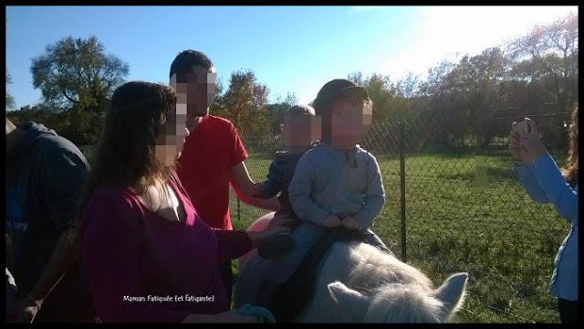 poney en famille