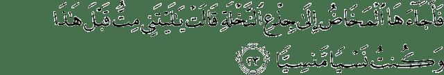 Surah Maryam ayat 23
