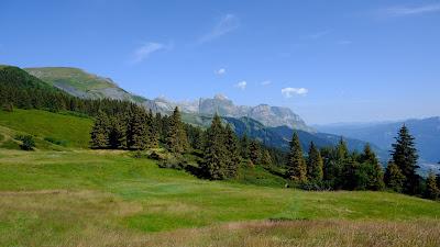 Field, mountains, trees, grass, lawn, landscape