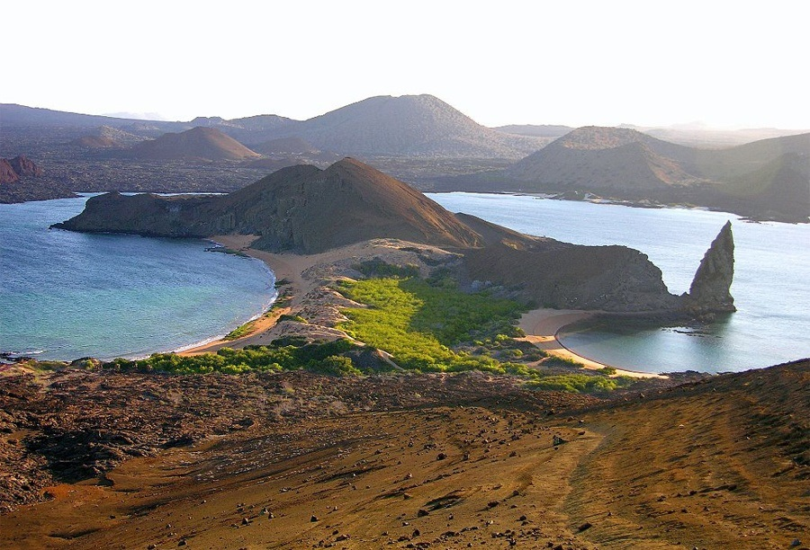 The Galápagos Islands