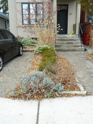 Toronto Front Yard Oakwood Vaughan Fall Cleanup Before by Paul Jung Gardening Services--a Toronto Gardening Company