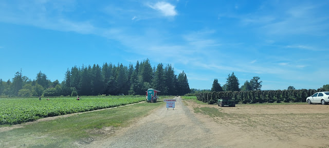 view of Boxx Berry Farm U-Pick Strawberry