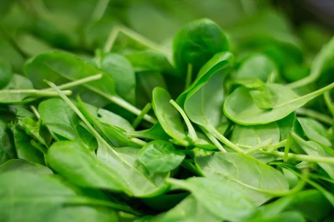 SPINACH 'N'  THINGS Recipes