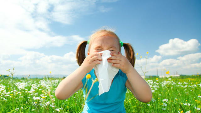 Allergic Rhinitis Home Remedies